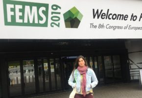 The Department of Microbiology of the UGR presented the progress of the LIFE Project at the FEMS Congress in Glasgow and at the SEFIN Congress in Madrid