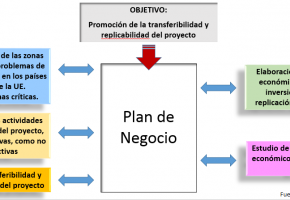 Main lines of the Business Plan
